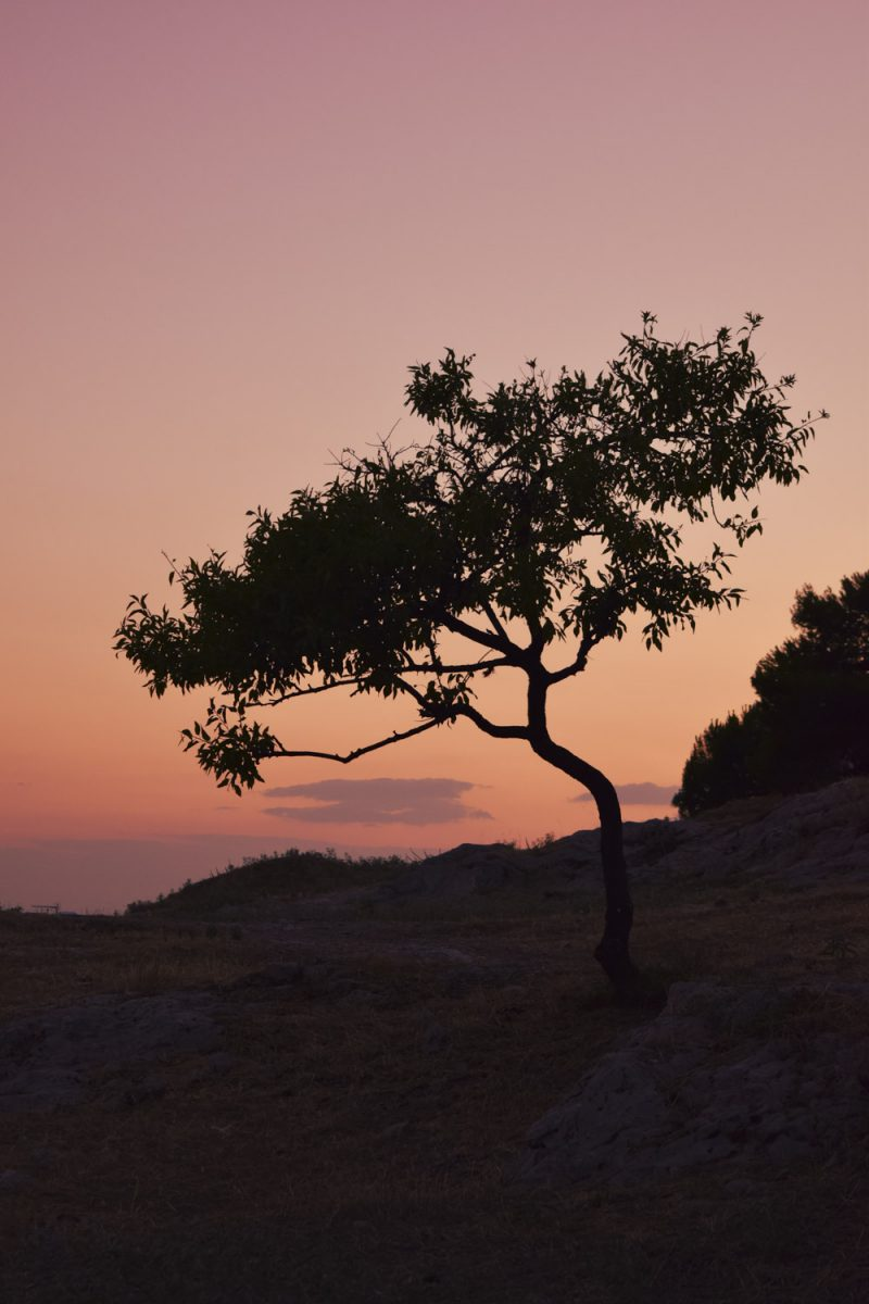 Kostas Fryganiotis Portfolio Landscapes (1)