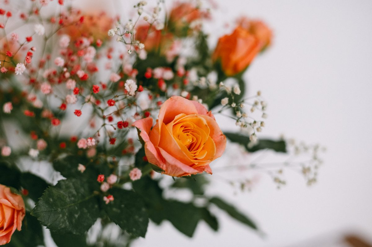 Aggelos-Stella-Wedding (30)